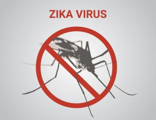 Zika Virus: A WHO Emergency